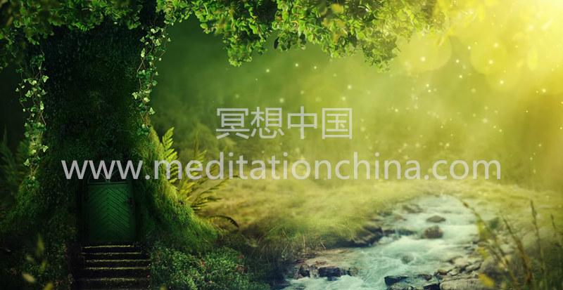 迷人的神秘森林音乐*积极快乐减压音乐,自然之声+鸟
