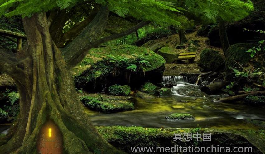 魔法治疗森林,冥想治疗睡眠音乐,睡眠冥想脉轮音乐-冥想中国
