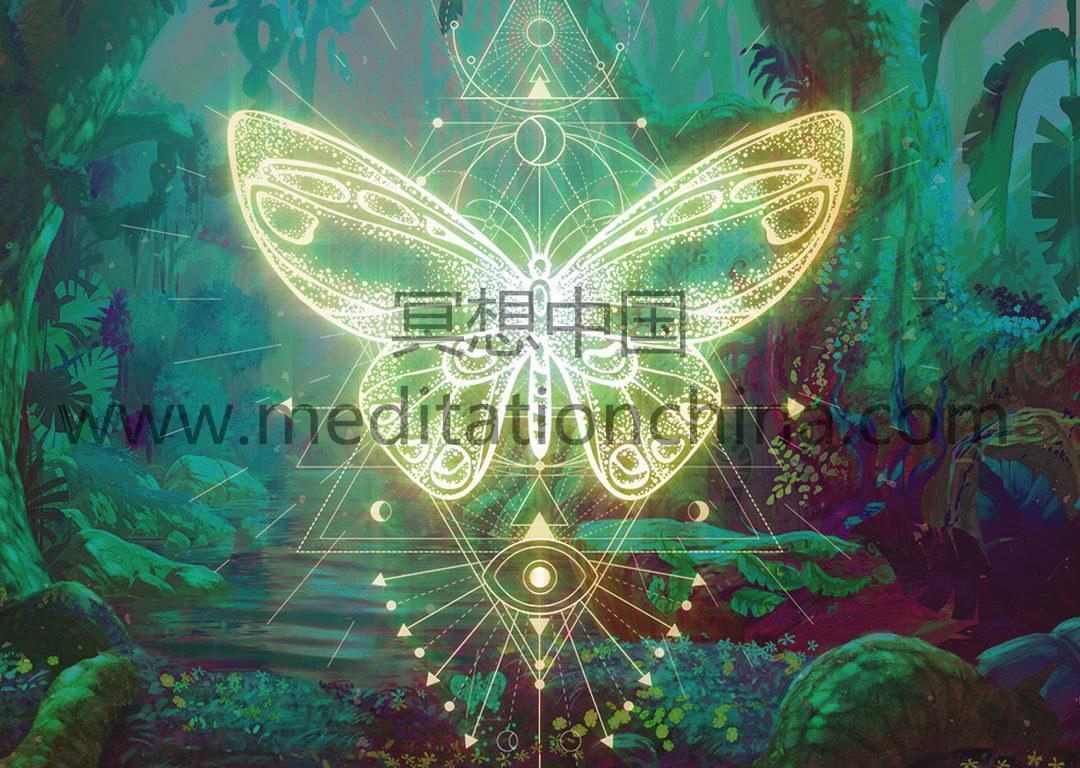 蝴蝶效应提升你的振动积极的光环净化432Hz音乐