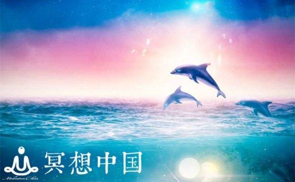 治疗海豚之歌+学习、冥想、深度睡眠的阿尔法双耳节拍